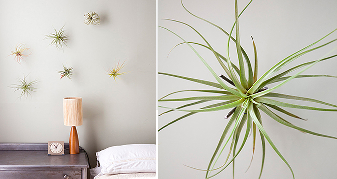 decorating your small 2-living
