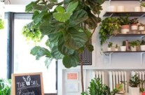 3 tips for a Cool Spring Update in your Home