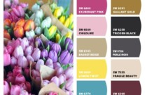 Spring Paints for Your Home